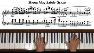 Download Mp3 Bach Sheep May Safely Graze  Arr.  Petri  Piano Tutorial