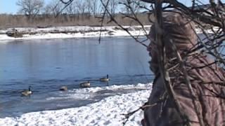 Montana River Mallard Hunt - The Fowl Life Season 1 episode 5