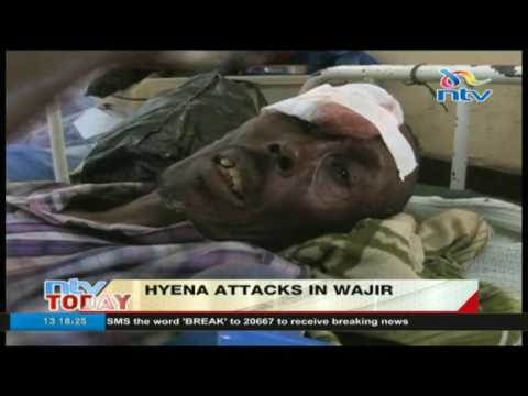 Wajir hyena attack victims to get over Ksh. 120 million government compensation