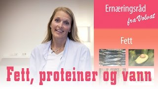 Ernæringstips fra Janne #del 2 | Fett, proteiner og hydrering