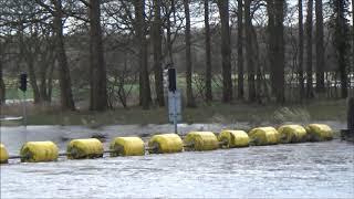 Hoog water rond Dalfsen  feb  2020