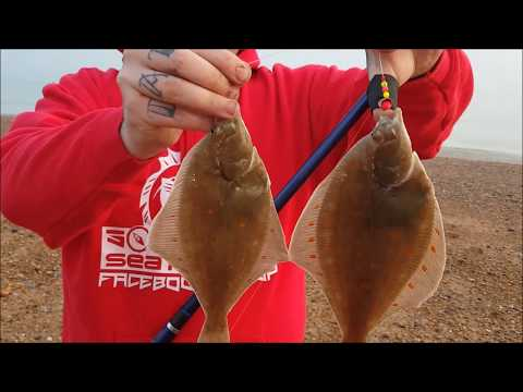 Southeast sea fishing.Plaice fishing hastings.12/03/16