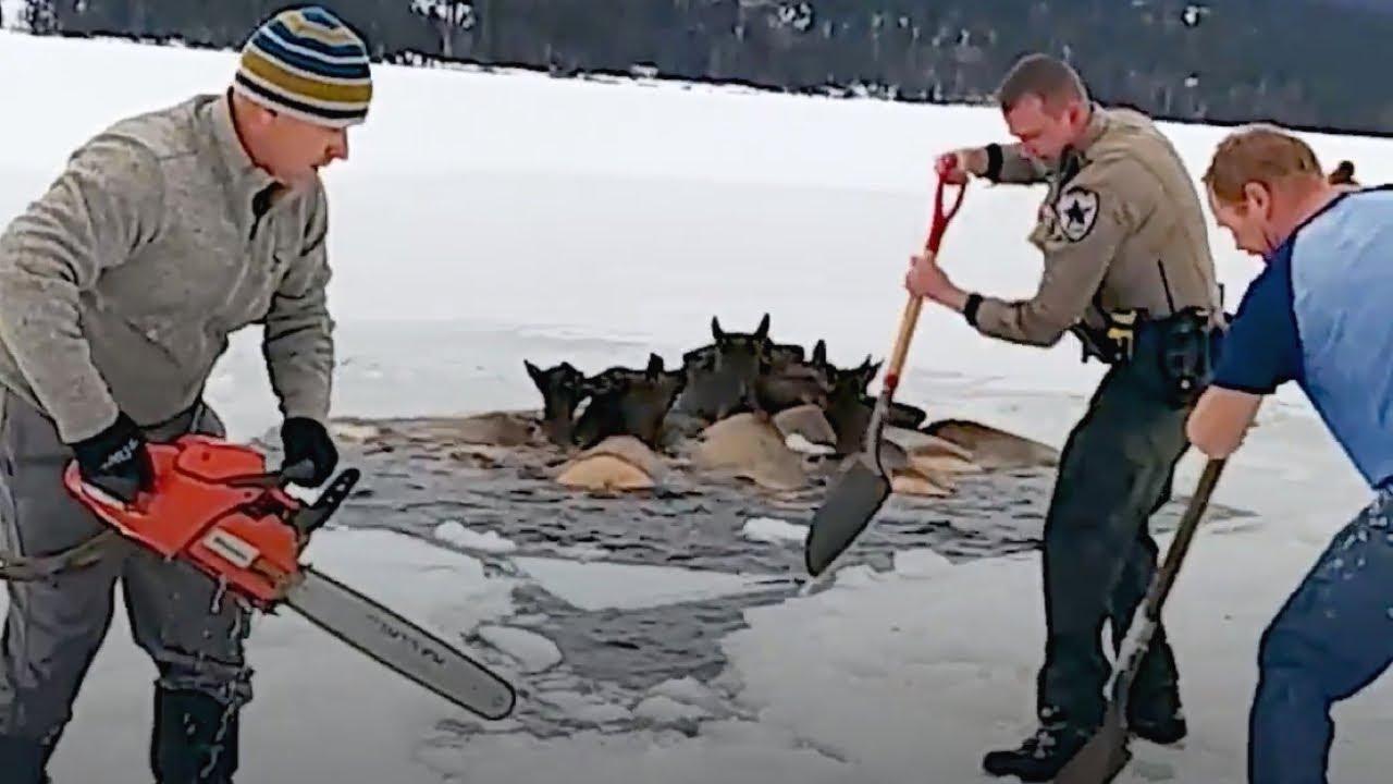 На Замерзшем Озере Случилась Беда. Местные Жители Бросились на Помощь - скачать с YouTube бесплатно