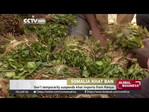 Somali gov't temporarily suspends khat imports from Kenya