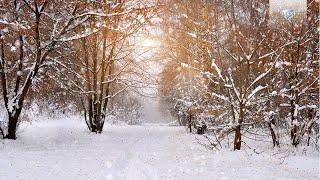 Winter Classical Music: Tchaikovsky, Vivaldi, Mussorgsky, Smetana
