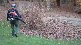 お父さん、腰を抜かしてビックリ!落ち葉の山から子どもたちがサプライズ出現