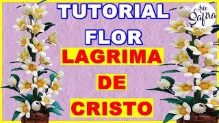 Flor de e.v.a lagrimas de Cristo – Arte Safira