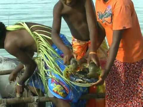 Vanuatu Aniwa Island