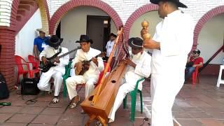 Amazing Maracas Playing