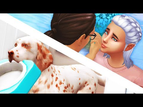 NEW FAMILY MEMBER // The Sims 4: Cats & Dogs #11
