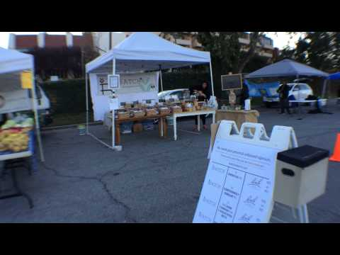 BATCH vs Bach flower remedies SURVEY at Port Washington Organic Farmer's Market - New York