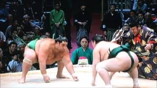 平成28年大相撲九州場所 11月24日 満員御礼 Sumo -Kyushu Basho.