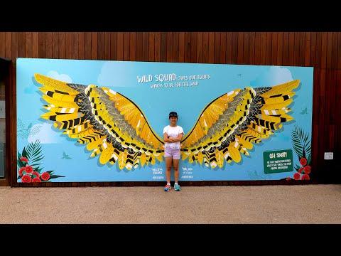 Taronga Zoo, Take Two