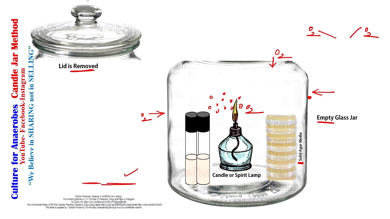 Cultivation of Anaerobes = Candle Jar Method Bacterial Culture and Media