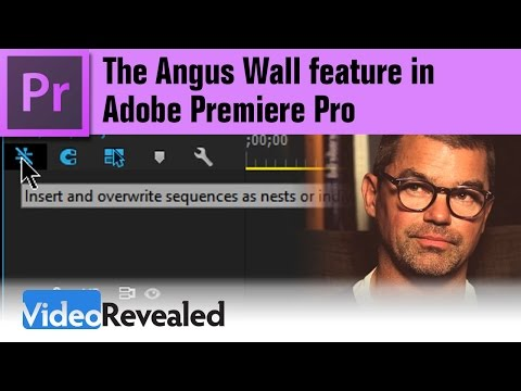 The Angus Wall feature in Adobe Premiere Pro