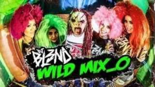 (WILD MIX) - DJ BL3ND