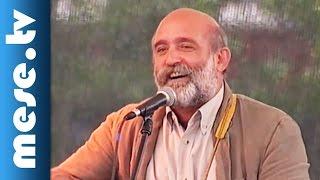 Gryllus Vilmos: Hajlik a fűzfa (koncert, gyerekdal) | MESE TV