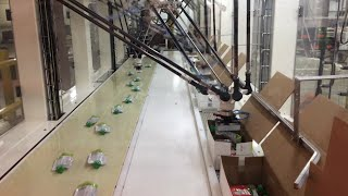 4 Delta Robots Pick & Pack Food Pouches in Automated Top Load Cartoner - StrongPoint Automation