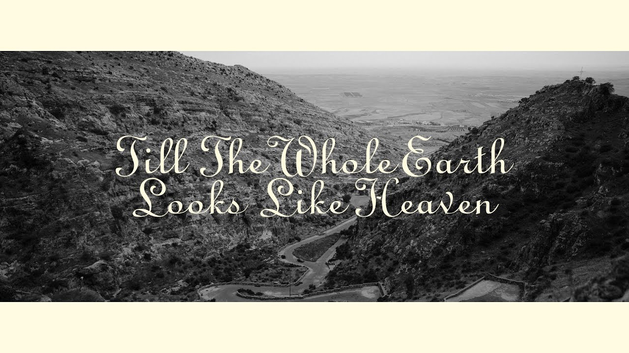 Till The Whole Earth Looks Like Heaven (Official Audio) - Sean Feucht | WILD