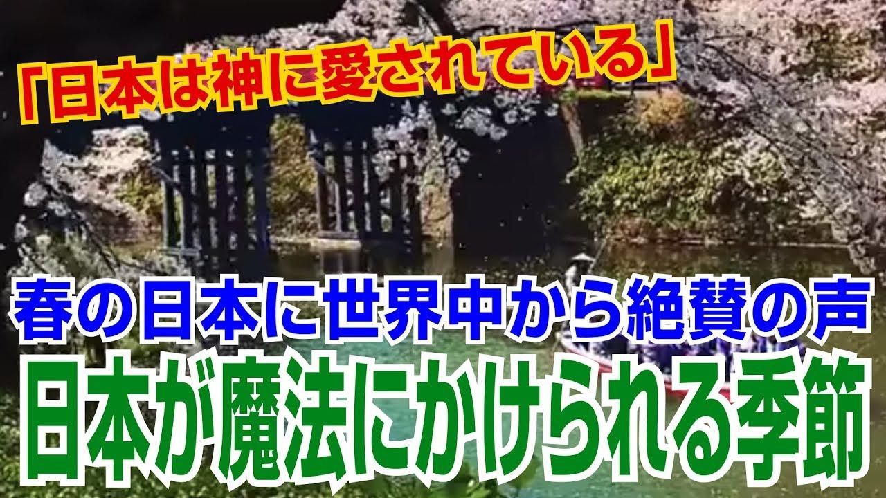 【海外の反応】感動「日本は神に愛されている」 春の日本が美しすぎると世界中から絶賛の声【海外の反応Lab】