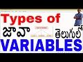 Types of Variables in Java in telugu || Local Variables || Instance Variables || Static Variables