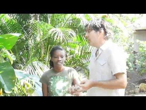 Zimbali Retreats Welcome Video