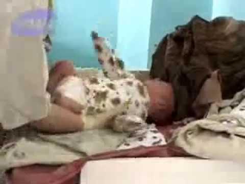 39 неделя беременности (видео): предвестники, почему болит