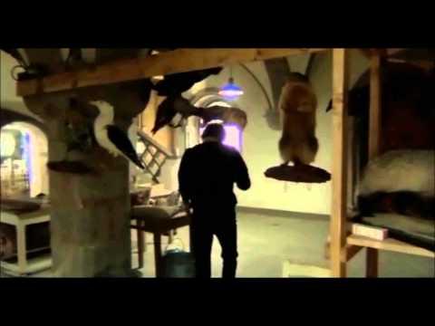 Decades Of Horror: Frank Wyler