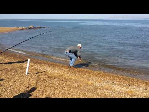 Sandy Point State Park - Pre-Season Fishing - Mathews 38