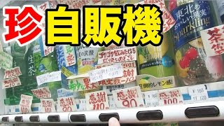 その数日本一!?貼り紙がいっぱいの自販機を発見!