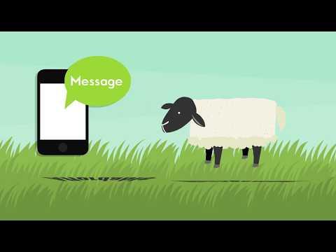 herd-defender---overview