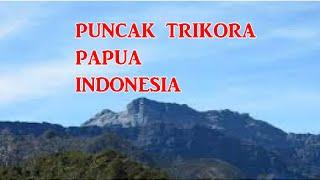 Wisata Indonesia : Puncak Trikora Papua Indonesia, Mopon ID