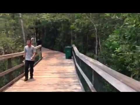 Turkey Creek, Niceville Florida