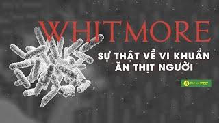 Tất cả những gì bạn cần biết về BỆNH WHITMORE, đây có thật sự là VI KHUẨN ĂN THỊT NGƯỜI hay không?