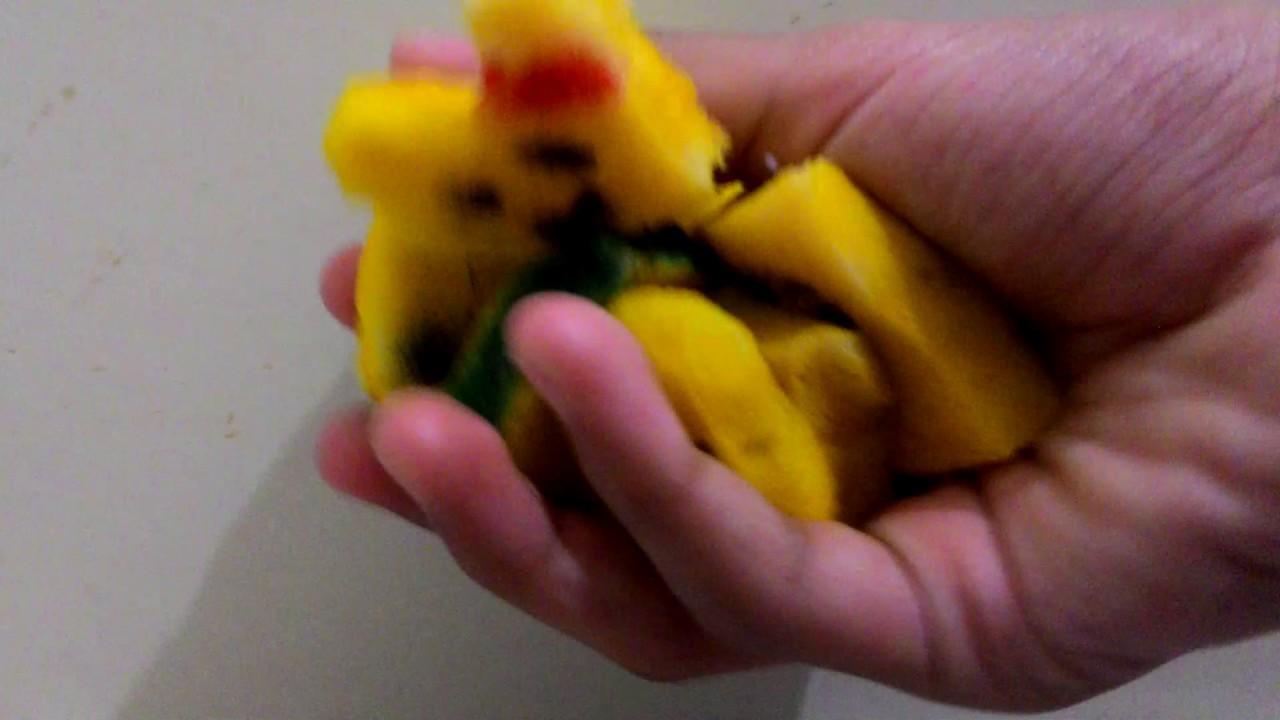 Squishy Giveaways : Rainbow squishy tag + Foam Giveaway!! - YouTube
