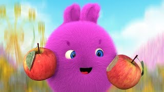 Cartoons for Children | SUNNY BUNNIES - DELICIOUS FRUIT | Funny Cartoons For Children