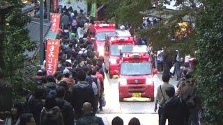 《東京消防庁》高尾山に山岳救助隊!登山者をかき分けながら緊急走行で入山する消防車とパトカー thumbnail
