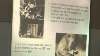 REHAB2014 - premières rencontres autour de la réhabilitation animale - Odile Petit