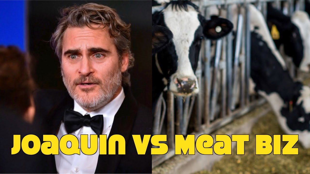 Meat Biz Blames Joaquin Phoenix For All Their Problems! Anti Vegan Nonsense!