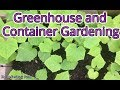 Greenhouse and Container Gardening Project and Much Appreciation