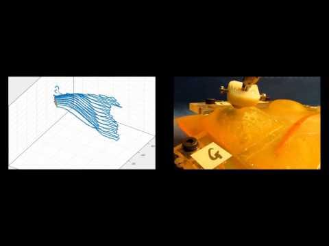 Phantom Organ Scanning Using da Vinci Patient Side Manipulator