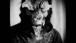 simpletones- disco ape
