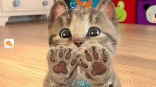 Ми ми ми! Маленький КОТЕНОК Развлекательное видео для детей Детский летсплей СИМУЛЯТОР котика