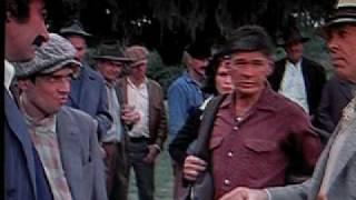 Bronson vs. New orleans