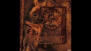 Necrophagist - Fermented Offal Discharge subtítulos español lyrics