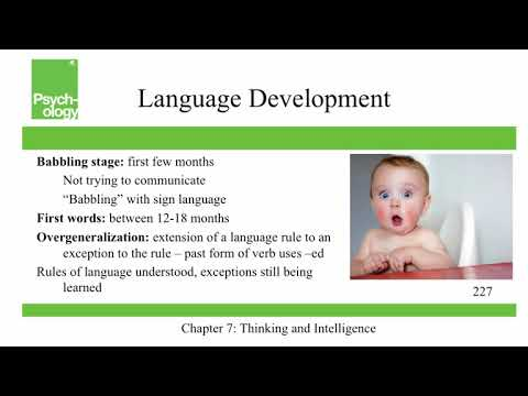 Openstax Psychology - Ch7 - Thinking And Intelligence