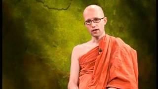 How Mindfulness Creates Understanding (The Buddhist TV)