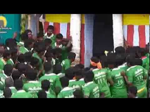 Palamedu Jallikattu 2014 Travel Video