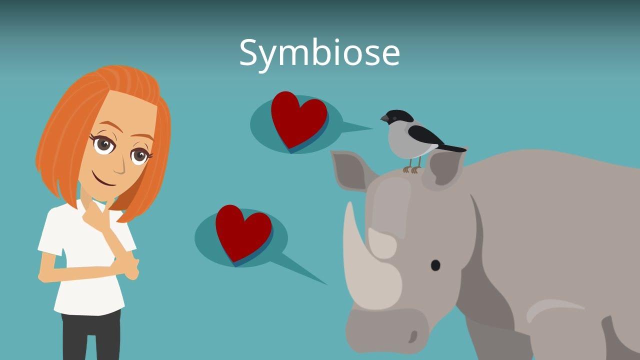 Symbiose