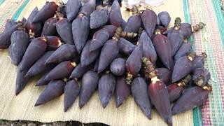 100 Farm Fresh Banana Flower BIRYANI   Amazing Taste   VILLAGE FOOD